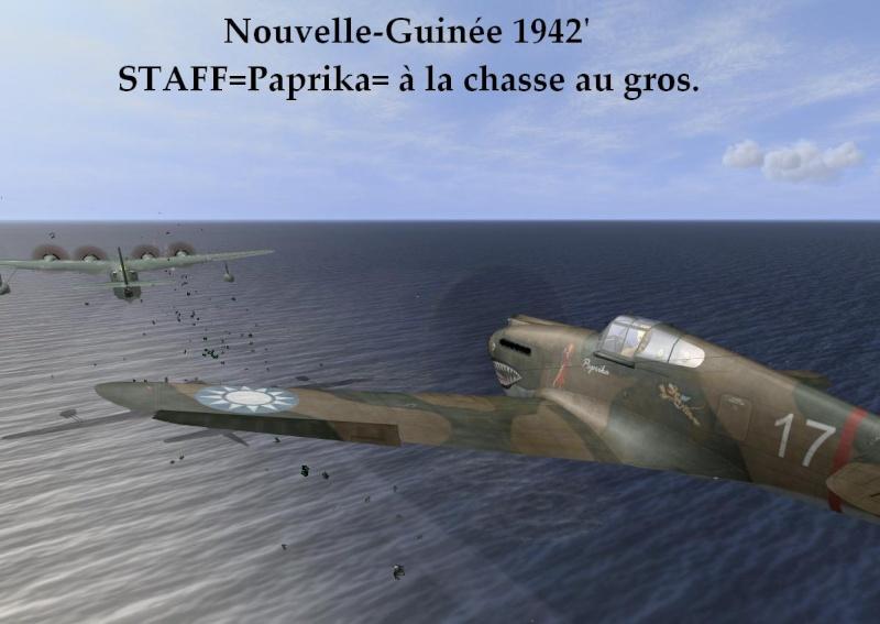 Campagne Nouvelle Guinée Papmis10