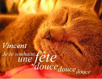 Bonne fête Vincent !!!!!!!!!!!!!! Fate_v10