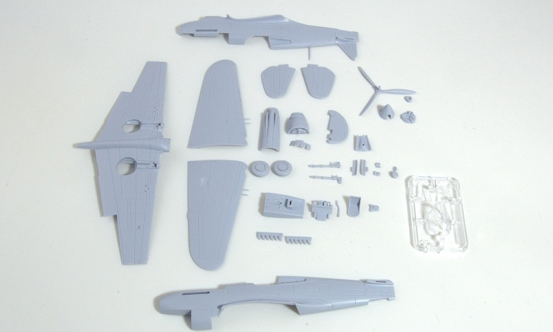 Curtiss P-40 Airfix et Trumpeter - 1/72 - special project 311