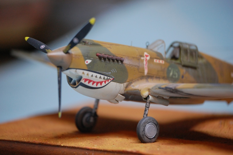 Curtiss P-40 Airfix et Trumpeter - 1/72 - special project Curtis10