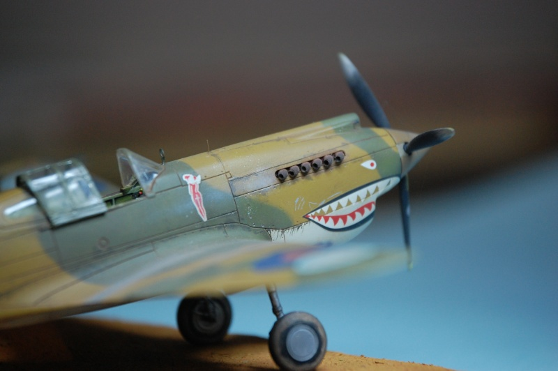 Curtiss P-40 Airfix et Trumpeter - 1/72 - special project Curtis11