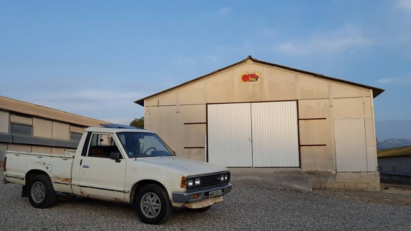 DATSUN PICK UP 720  2WD Version US 2.4L es de 1984  12790910