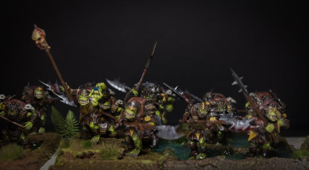 Orque de Leonheart - Page 2 Dsc_2017