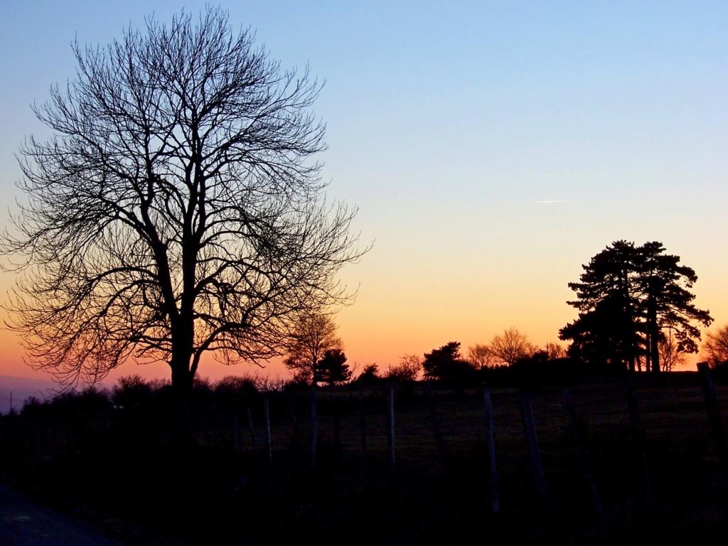 """Déficoncours """"silhouettes hivernales"""" - les participations 100_0610"""