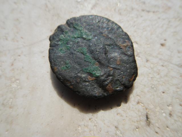 Arvernes Bronze IIPOS  Dsc03012