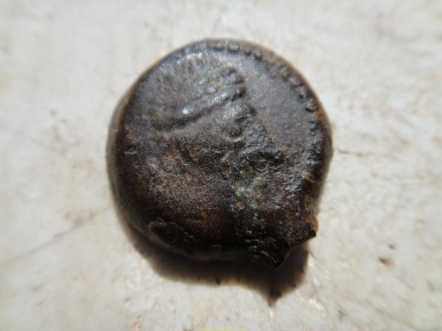 Bronze au Taureau SAMNAGENSES Dsc03013