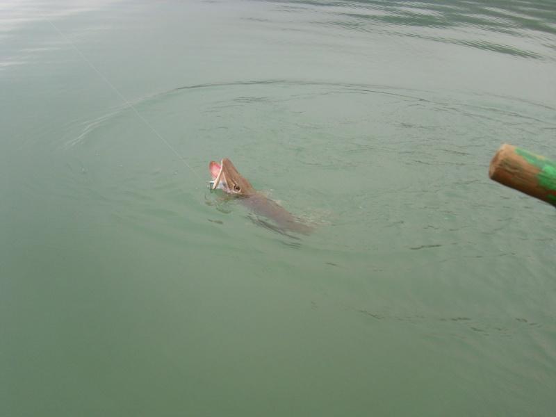 petite viré au lac d'Aiguebelette Img_2741