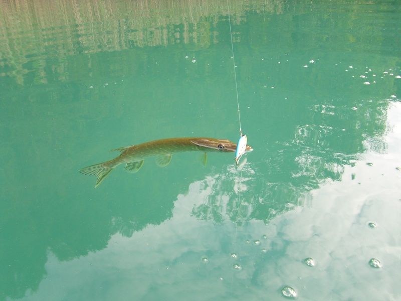 petite viré au lac d'Aiguebelette Img_2751