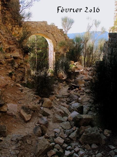 Balade au Castellas Img_0010