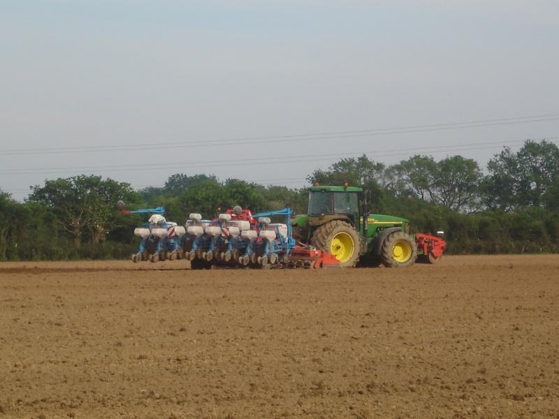 Semis maïs 2009 210