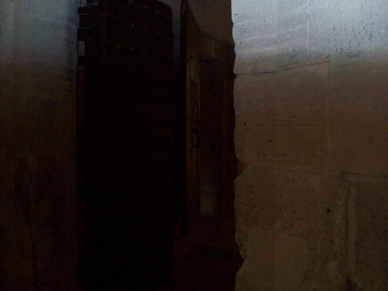 le château de Vincennes Ppp_0018