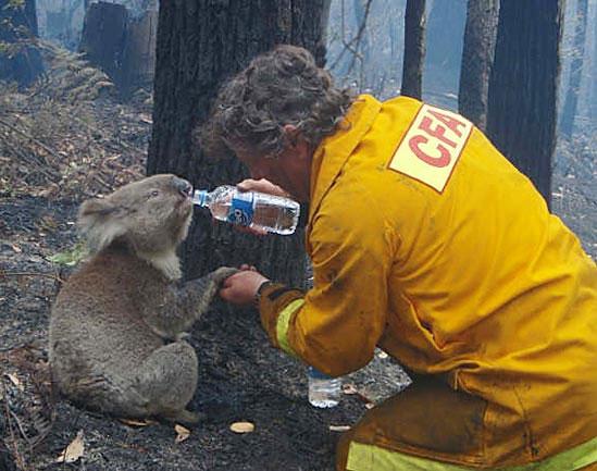 Lindo gesto de um bombeiro! Att00010