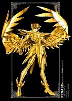 Les Armures D'or (ou comment bien s'equiper) D7e3da11