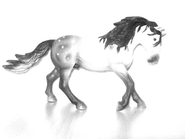 Mini-Horses =P Hpim2310