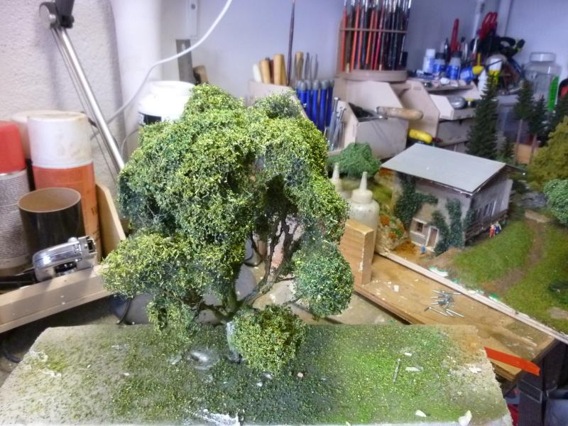 les arbres P1090354