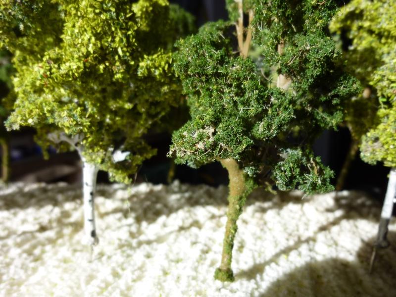 arbres pour Dudu P1090360