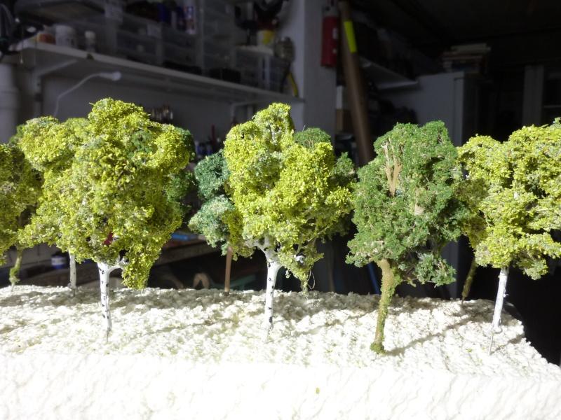 arbres pour Dudu P1090361