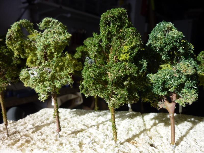 arbres pour Dudu P1090362