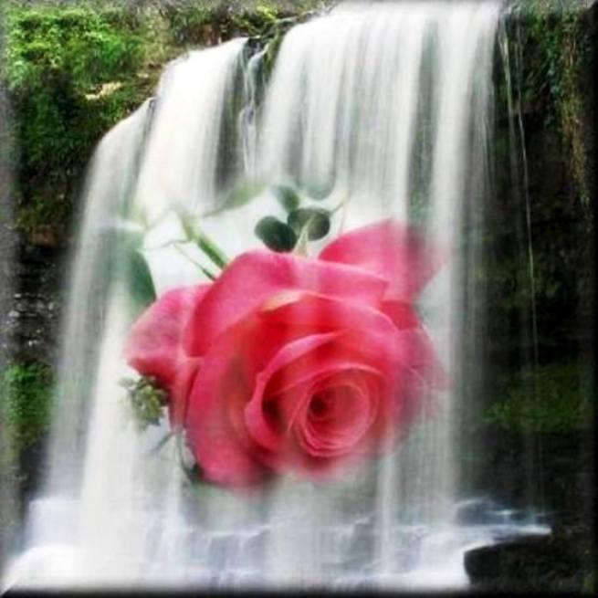 La source d'eau vive symbolise les bénédictions spirituelles permanentes, inépuisables, que nous apporte la présence de Dieu.  11755910