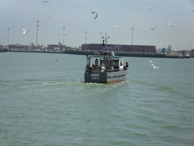 Activité maritime à Ostende Sdc10224