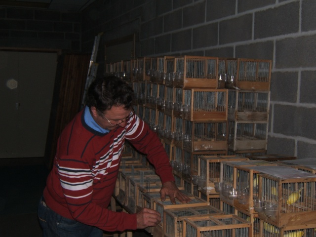 Preparation du concours Malinois du 22 novembre 2009. Dscf4824