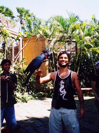 """Animal Planet"" Bali810"