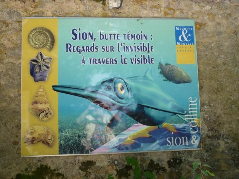Exposition permanente à Sion Lorraine Sion_d21