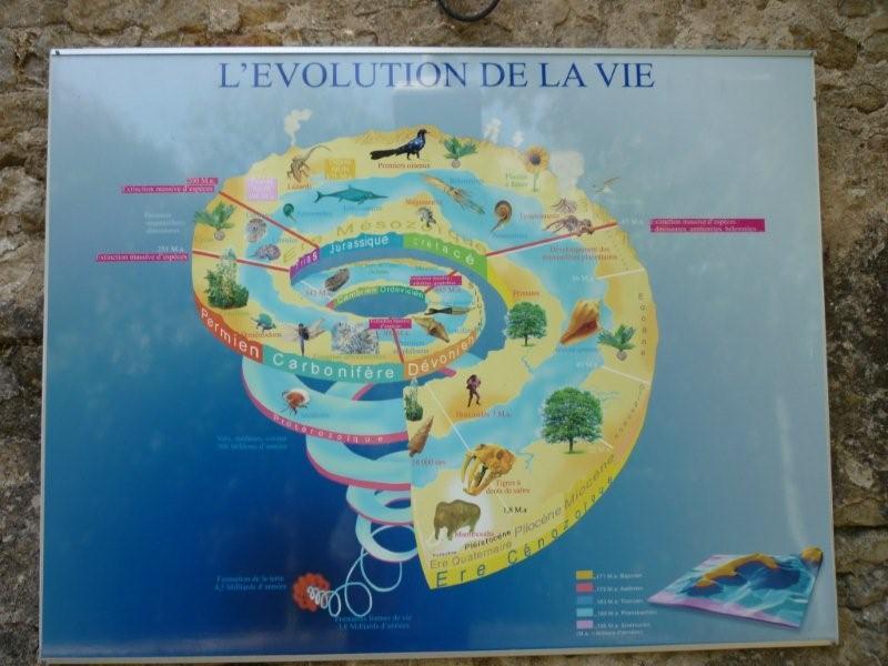 Exposition permanente à Sion Lorraine Sion_d27