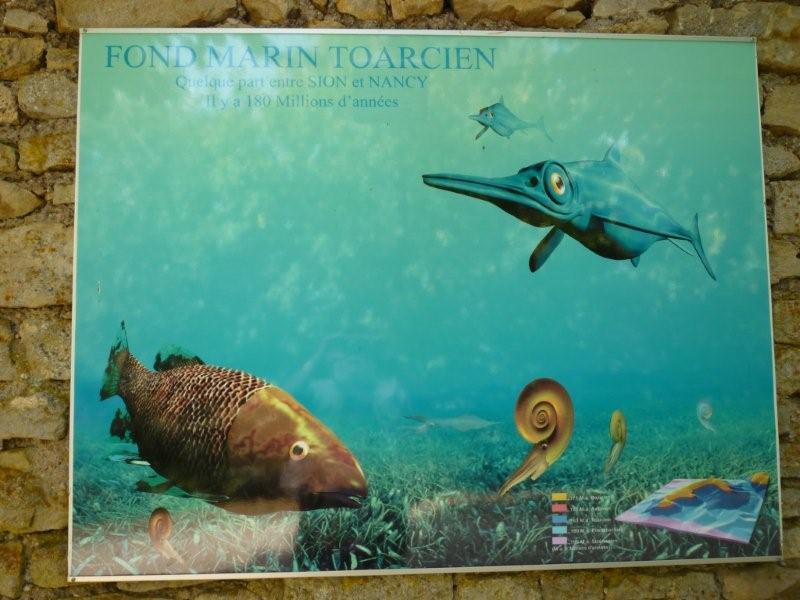 Exposition permanente à Sion Lorraine Sion_d28