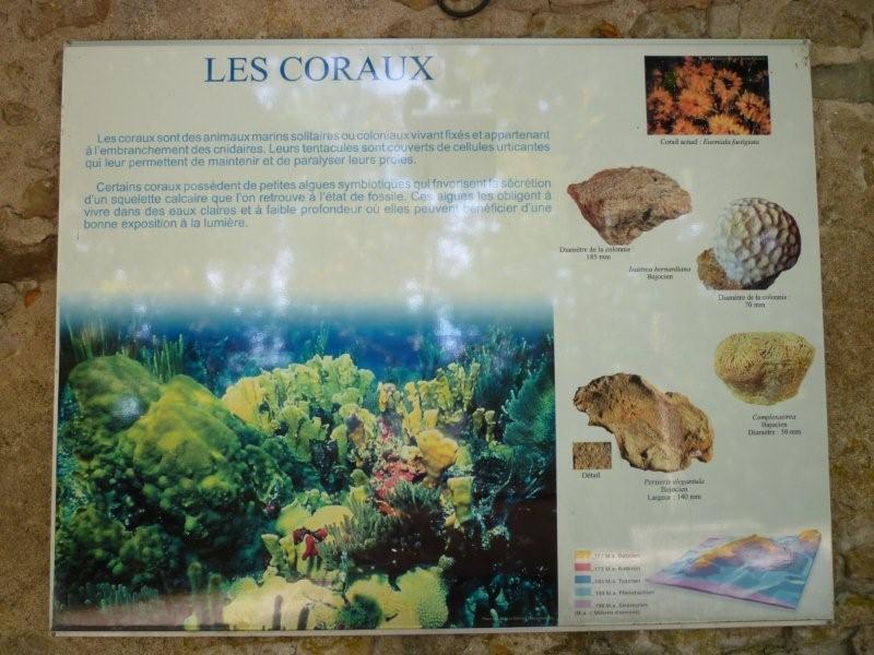 Exposition permanente à Sion Lorraine Sion_d37