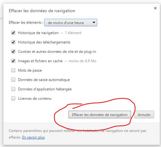 Vider le cash de Google Chrome Captur24