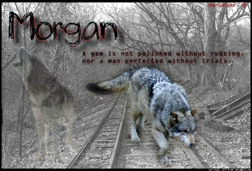 [[Morgan]] Morgan11