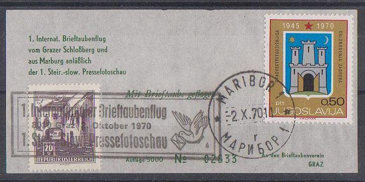 Brieftaubenflug Forum_18