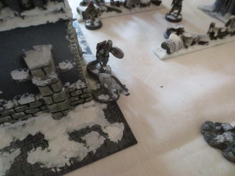 premiers combats dans le monde de la glace neigeuse... Img_2510
