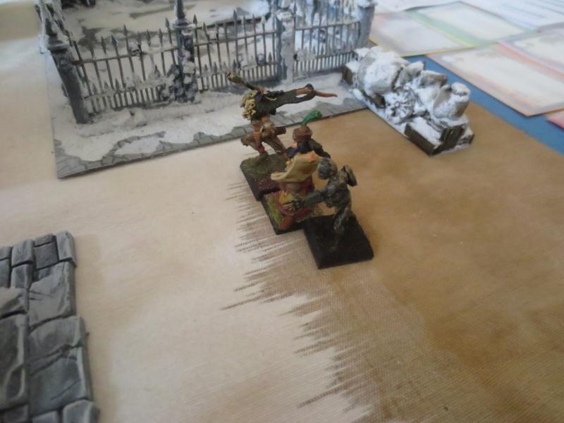 premiers combats dans le monde de la glace neigeuse... Img_2513