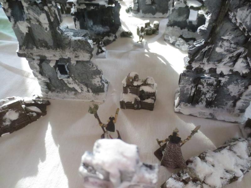 premiers combats dans le monde de la glace neigeuse... Img_2516