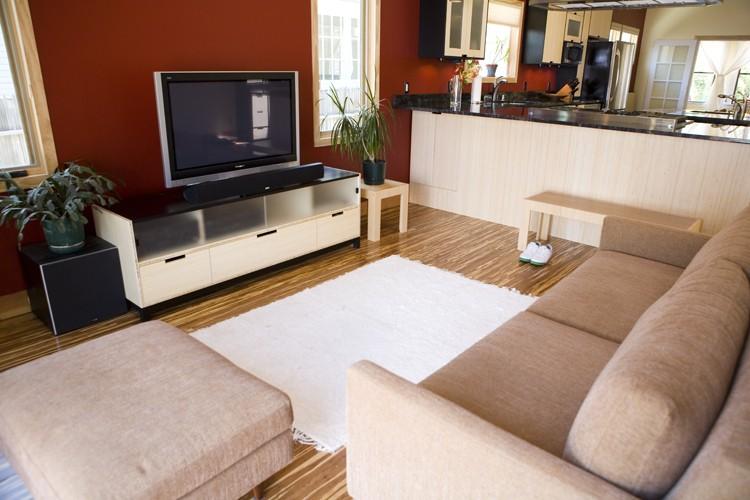 Besoin d'aide et de conseils pour la décoration de notre appartement 30095010