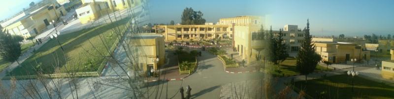 Centre Universitaire de Khemis Miliana