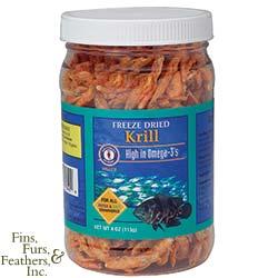Cichlid Feeding Krill10