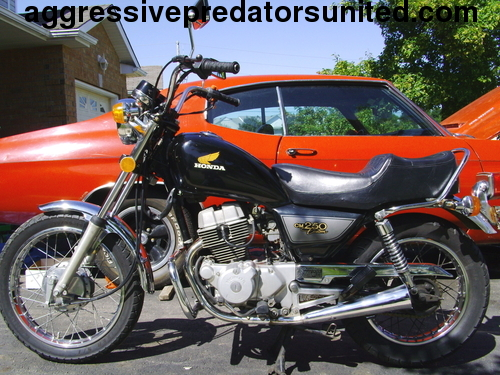 My Vintage 1982 Honda 250 LTD Edition Metal_18