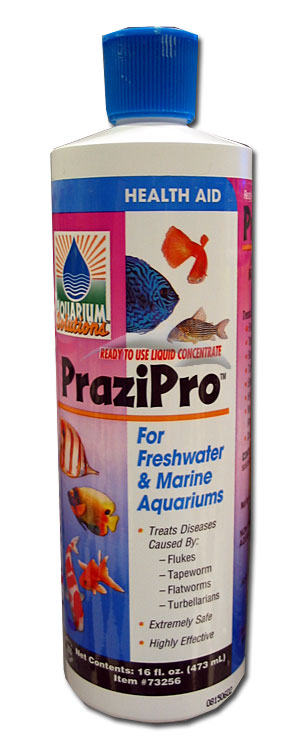 PraziPro-This Stuff Is A Must For ALL Predator Aggressive Keepers!!! Prazip10
