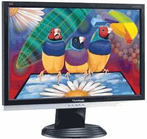 "MONITORI 19"" Viewso10"