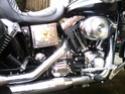 Ma nouvelle monture... Img_2010