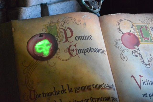 Les nouvelles aventures Ch'timique en mode Pass Annuel DREAM  - Page 4 Dsc_9122