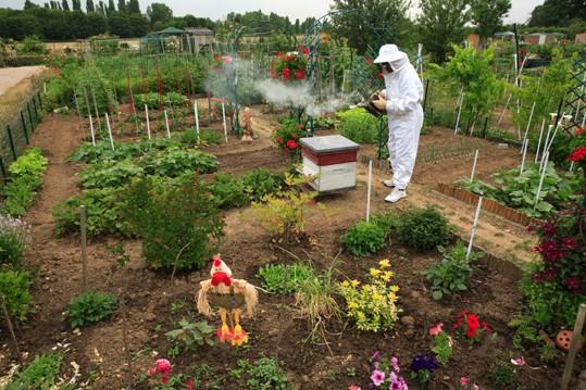 منتدى عزالدين حريدي لأبحاث النحل