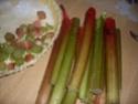 tarte a la rhubarbe Recett18