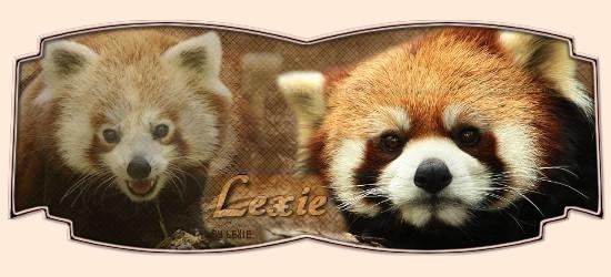 Cours pour Lexie Lexiep10