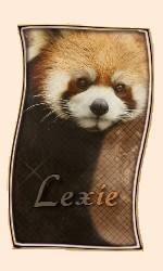 Cours pour Lexie Panda11