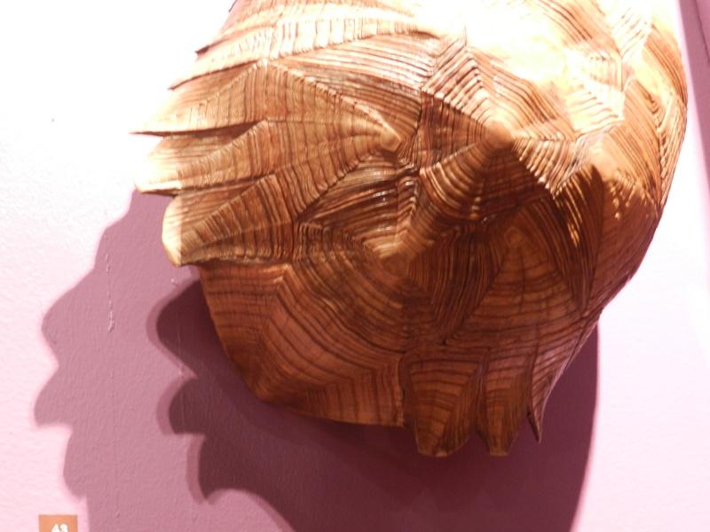 expo Cabinet des merveilles Laval France en 2016 Vauvyr31