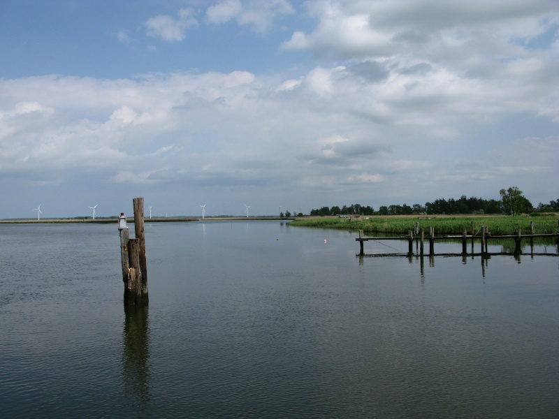 Pêche de tourisme au Danemark Img_0210